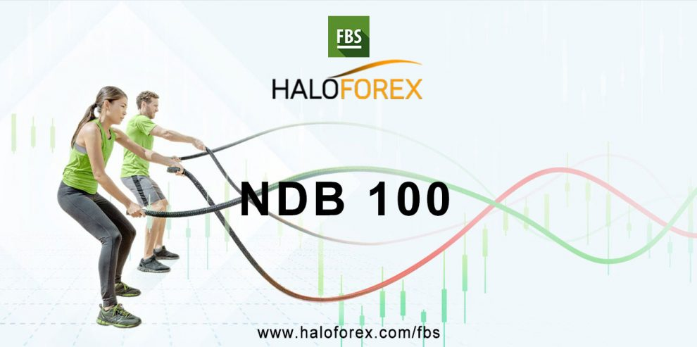 ndb 100